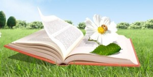 cropped-book-flower.jpg