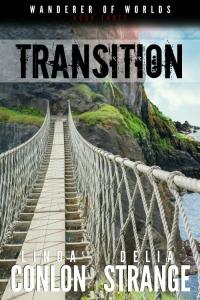 3Transition_500x750